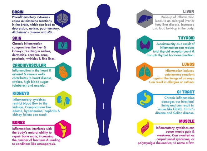 Infographic: How Inflammation Affects the Body by ecoNugenics