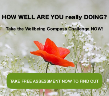 My Wellbeing Compass Free Assessment
